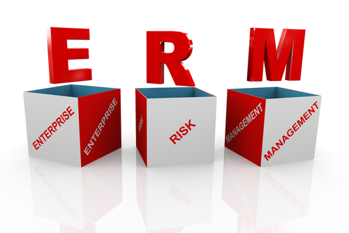 enterprise risk management in insurance pdf