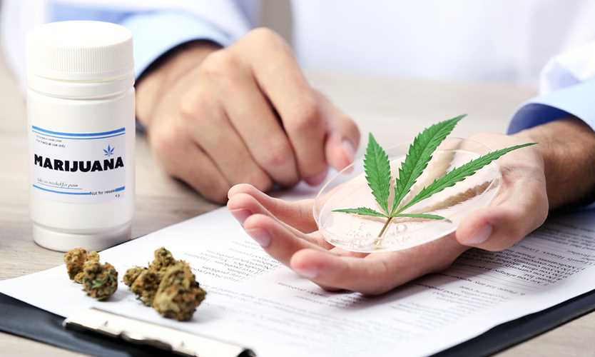 research papers drug abuse Same-day delivery - 24 hours a day drug abuse that pays particular attention to the extent of the custom research papers are also available.